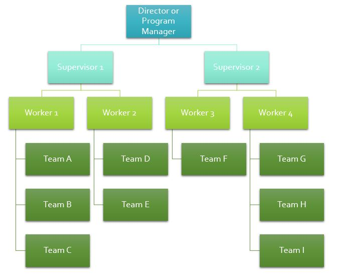 Organizational Chart within FosterCare.Team foster care software