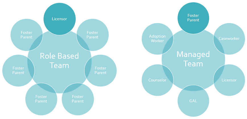 team types within FosterCare.Team foster care software